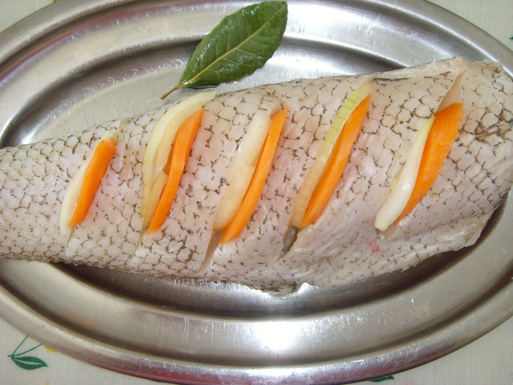 гренадер рыба фото