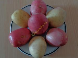 O-cartofele